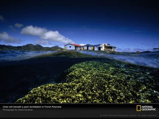 Amazing Net Geo Photos of the Day